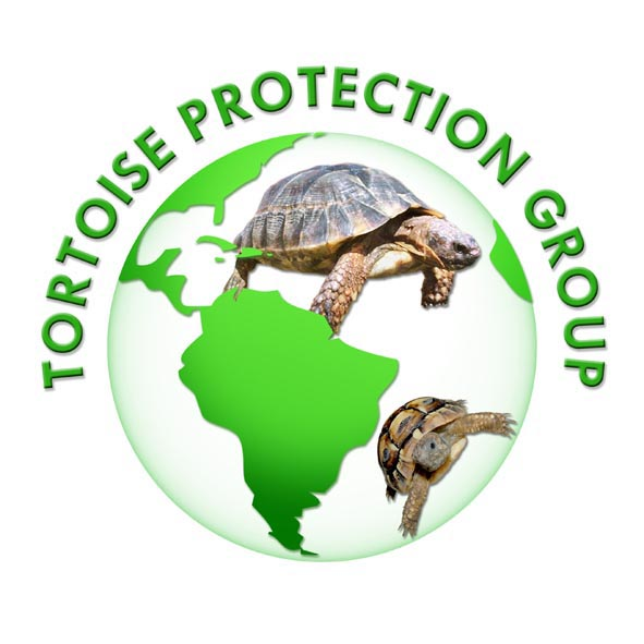 TPG Tortoise Rehoming / Rescue - Tortoise Protection Group